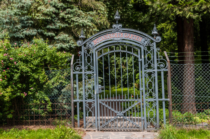 Botanischer-Garten-Darmstadt