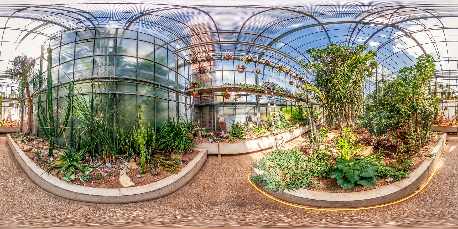 Botanischer-Garten-Darmstadt-Sukkukentenhaus