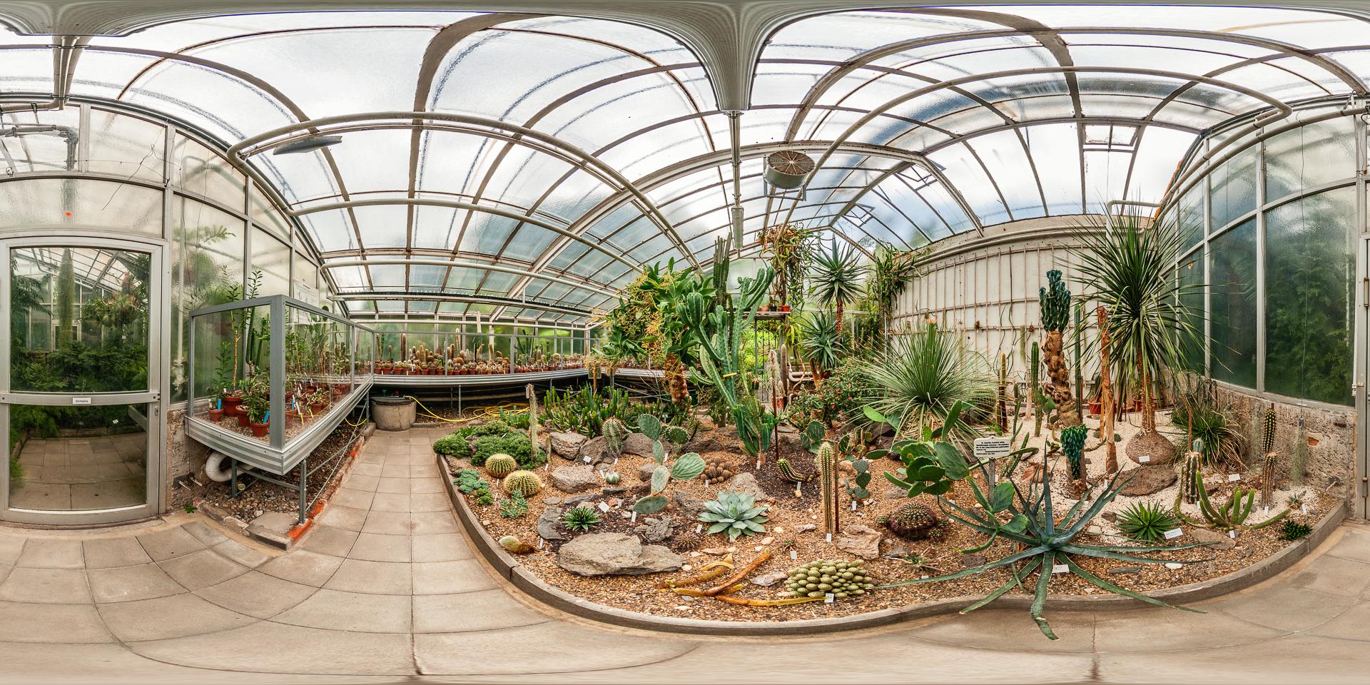 Botanischer-Garten-Giessen-Sukkulentenhaus