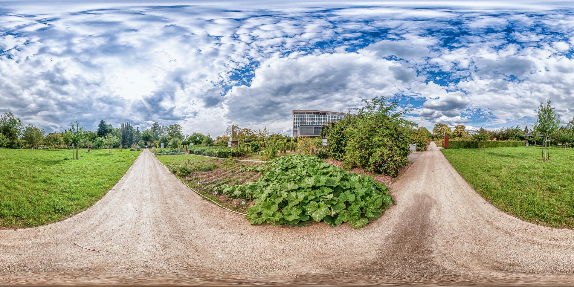 Botanischer-Garten-Mainz-Bauerngarten