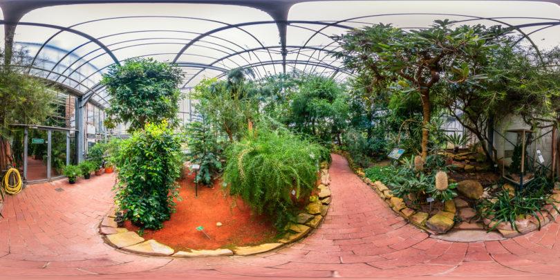 Botanischer-Garten-Marburg-Australienhaus