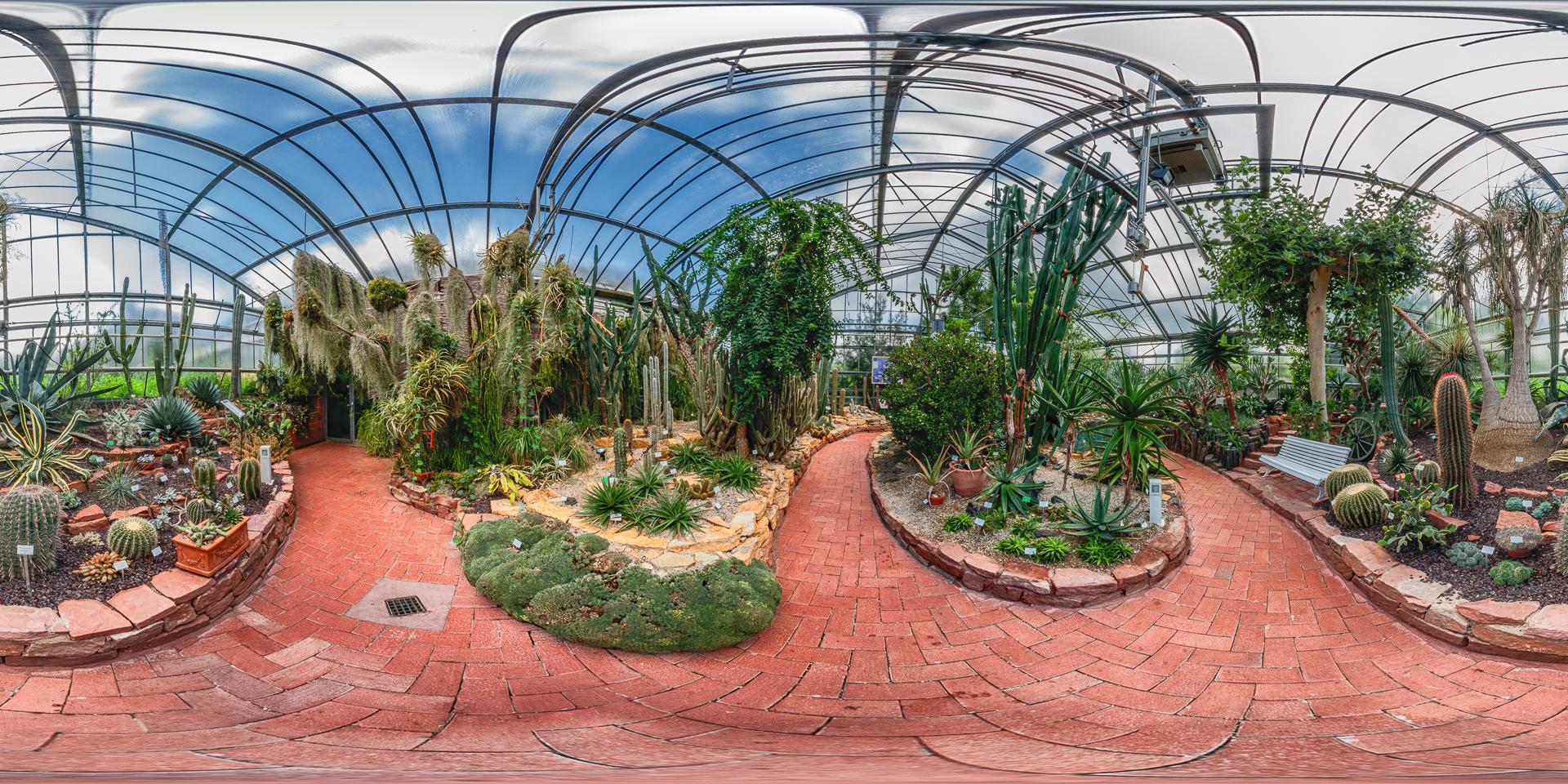 Botanischer-Garten-Marburg-Sukkulentenhaus