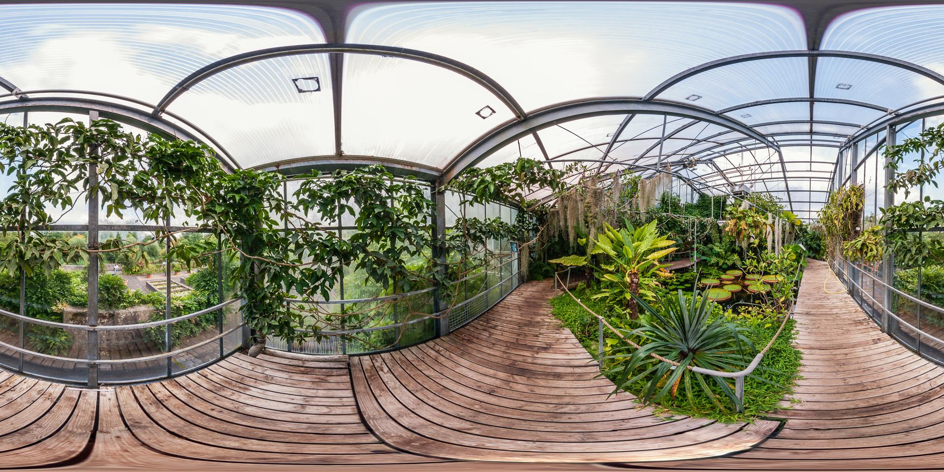 Botanischer-Garten-Marburg-Wasserpflanzenhaus