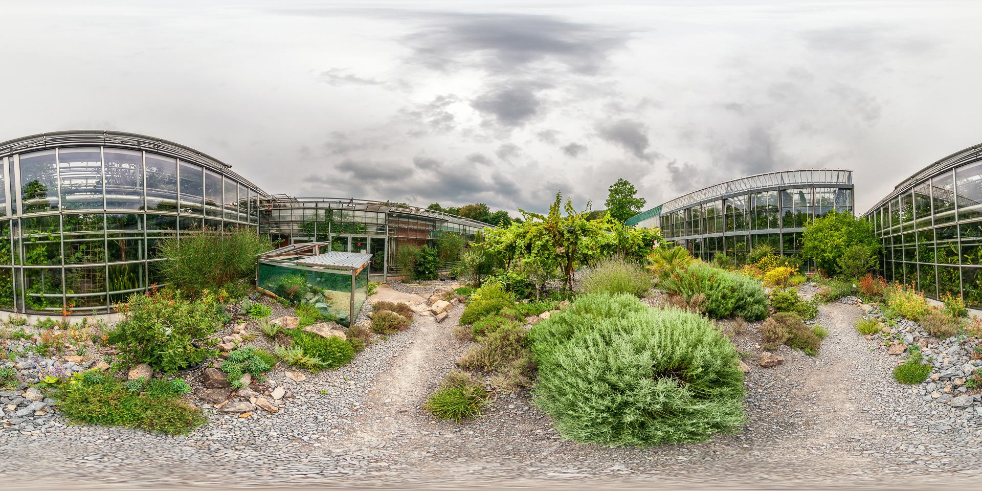 Botanischer-Garten-Wuerzburg-Mediterraner-Innenhof