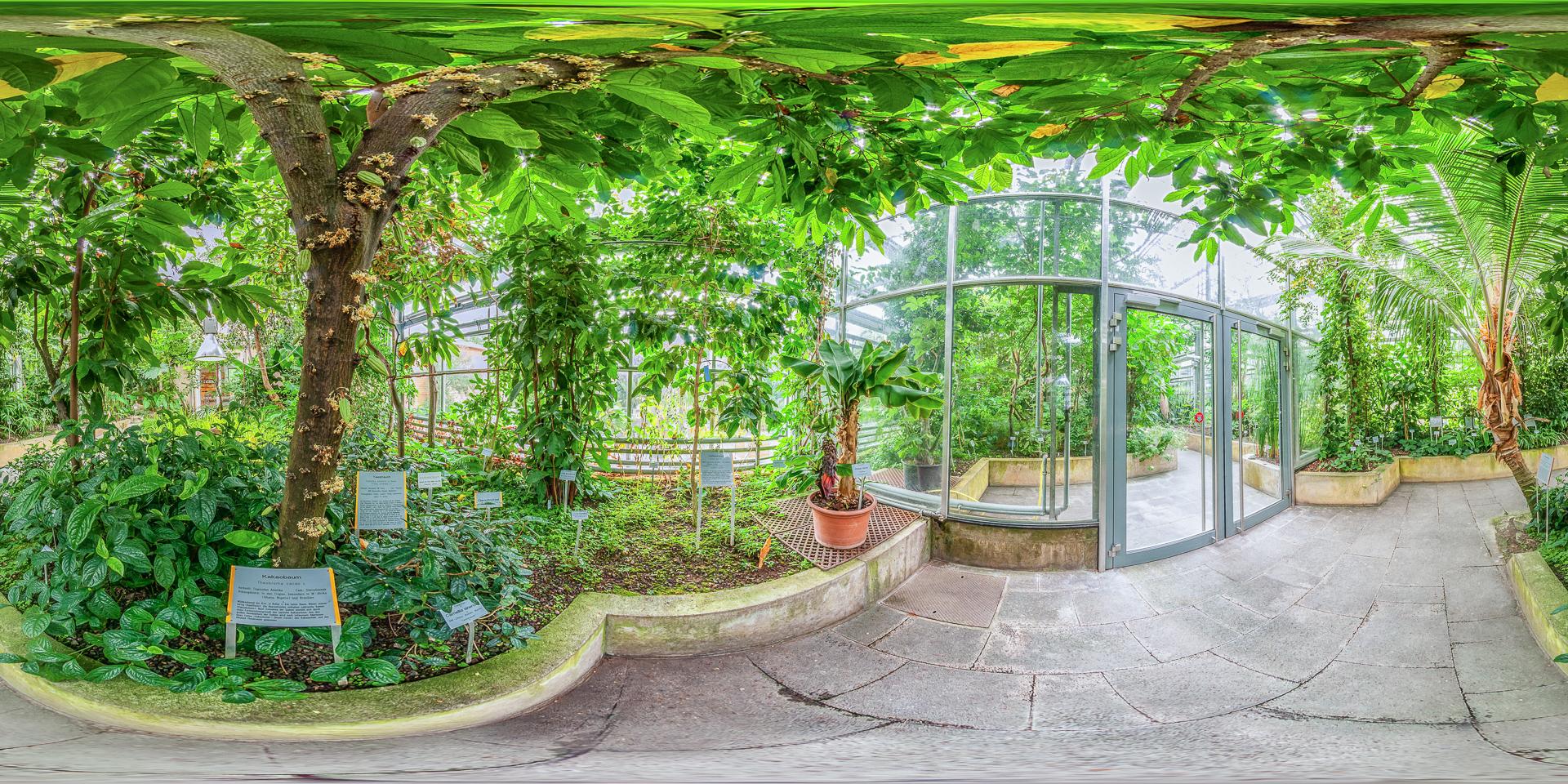 Botanischer-Garten-Wuerzburg-Nutzpflanzen