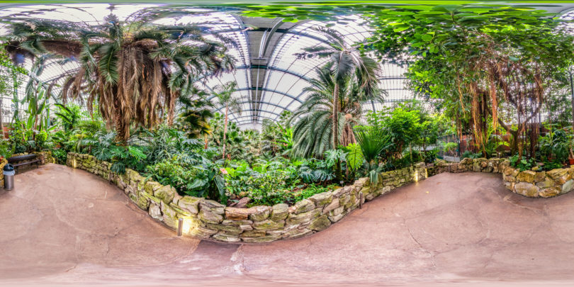 Palmengarten-Palmenhaus