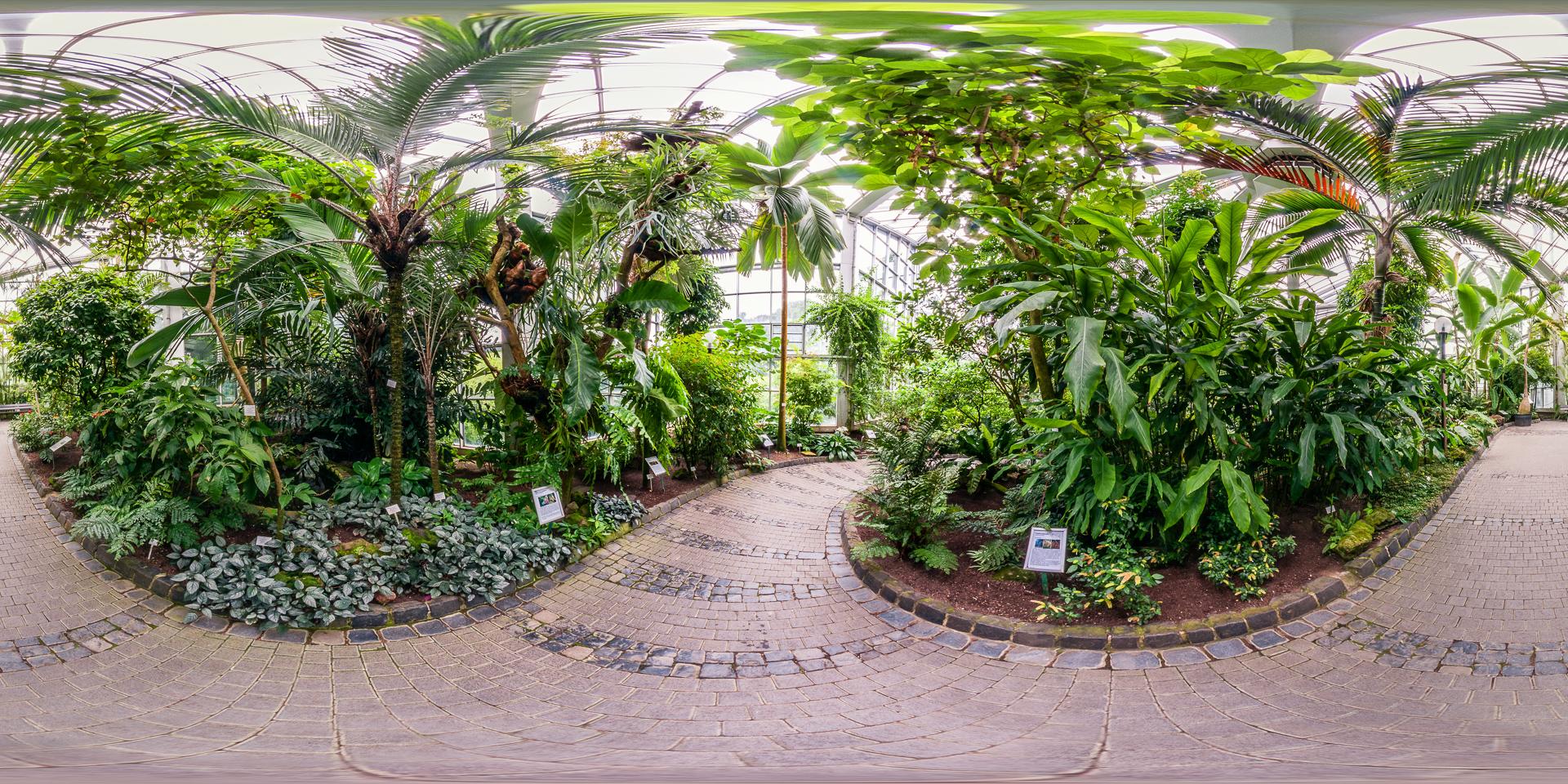 Palmengarten-Tropicarium-Monsunwald