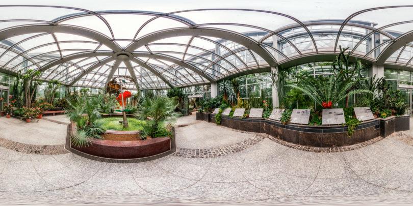 Palmengarten-Tropicarium-Trockene-Tropen